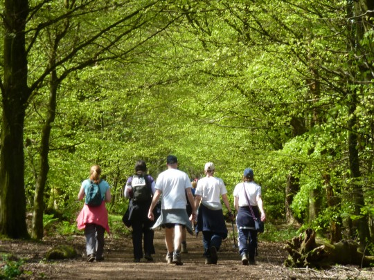People walking the wight in Brighstone Forest