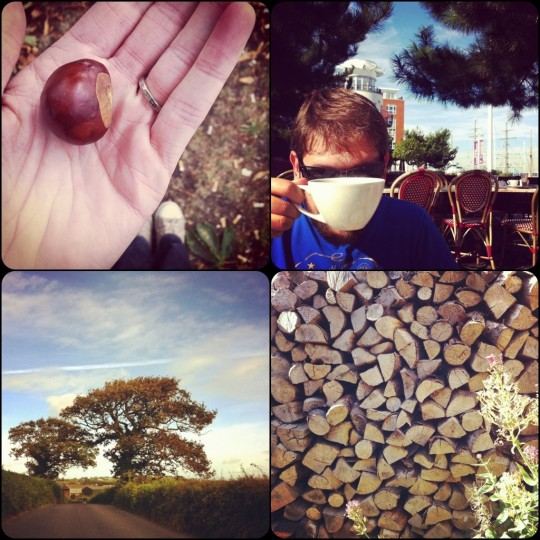 holding a conker, hiding behind a teacup, autumn country lane, wood pile