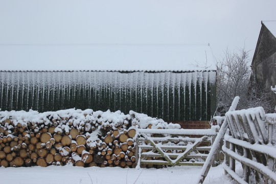 Logs and fence covered in snow