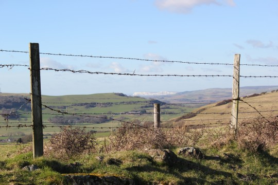 View from Bonchurch down, across to Tennyson Down, through a fence