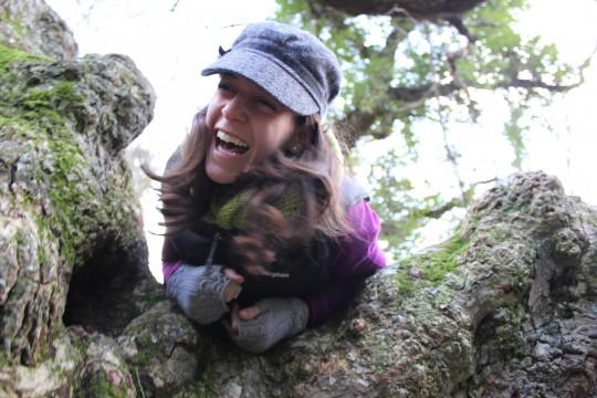 Bryony stuck in a tree in Bonchurch, Isle of Wight