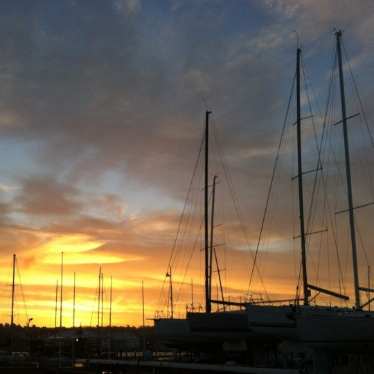 Marina masts at sunset