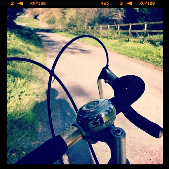 View from a bike's handlebars