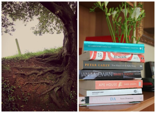Photo collage of trees and books