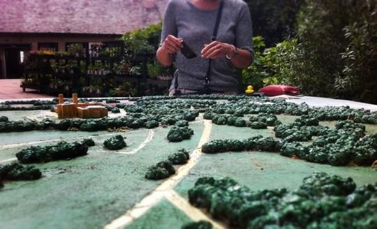 Miniature countryside
