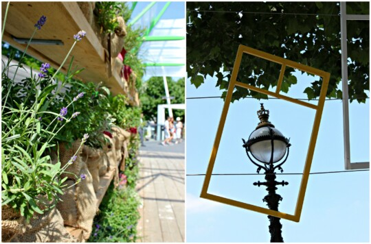 Pop up herb garden and hanging window frames photo collage