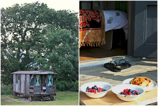 Wooden hut and brunch photo collage
