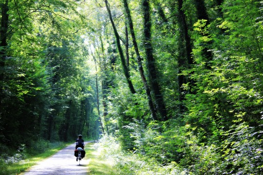 Bryony cycling in the shade in Voie Vert, Normandie bike path