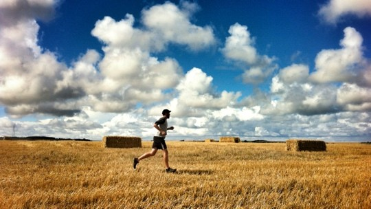 Tom running through a field with hay bales