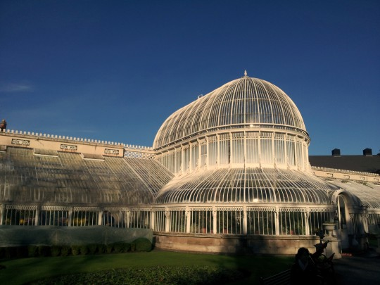 Belfast Palm House and bench from outside
