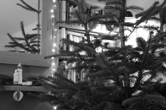 Christmas tree next to hearth mirror in black and white