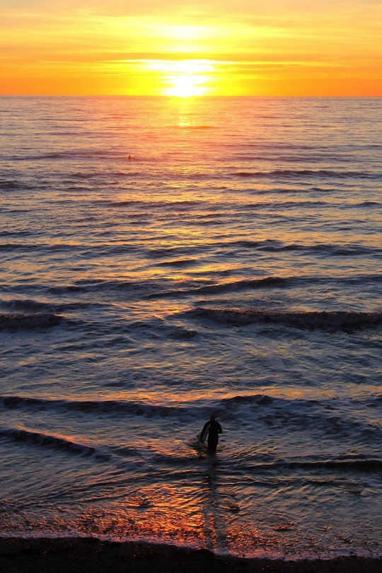 Surfer entering the water at Compton, Isle of Wight at sunset