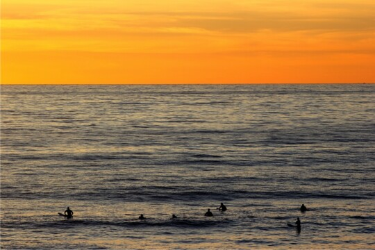 Surfers at Compton, Isle of Wight in last light