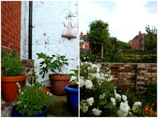 Garden photo collage