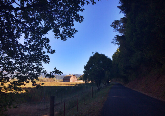 Old barn on a quiet road