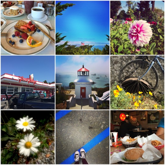 Humboldt holiday photo collage