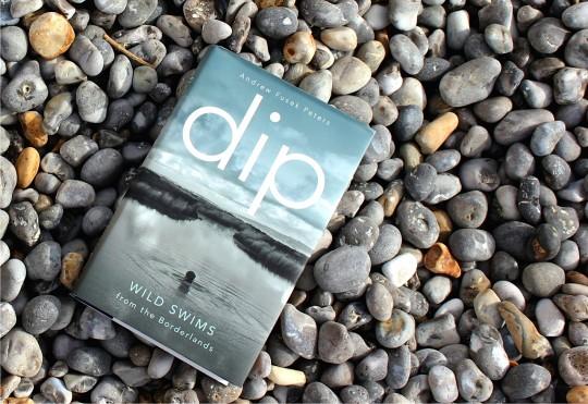 """Book """"Dip"""" by Andrew Fusek Peters on the beach"""