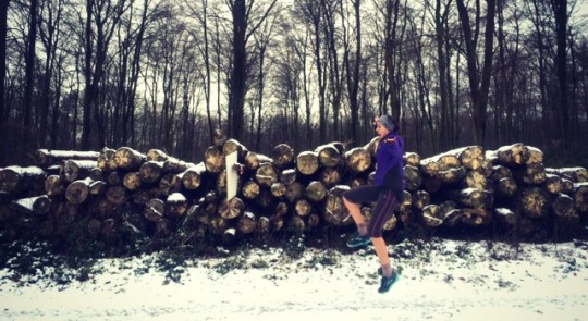 Rusty jumping in front of a snowy log pile