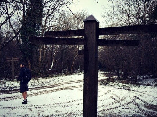 Tom standing in the road by a signpost