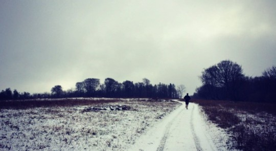 Running in the snow above Midhurst