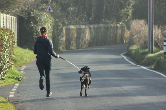 Rusty running with Rolo