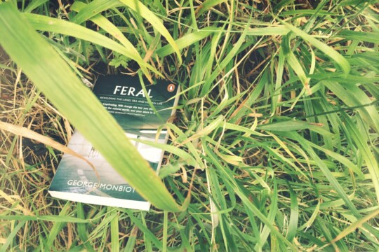 Feral book by George Monbiot, sitting in the grass