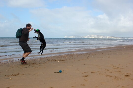 Tom and Rolo playing at the beach