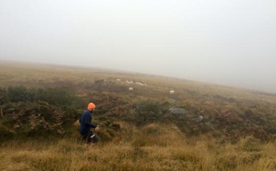 Tom running in the fog