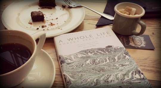 A Whole Life by Robert Seethaler book